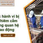 Các hành vi bị nghiêm cấm trong quan hệ lao động