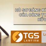 Hồ sơ đăng ký doanh nghiệp của công ty trách nhiệm hữu hạn