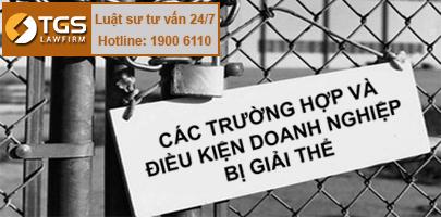 cac-truong-hop-va-dieu-kien-doanh-nghiep-bi-giai-the