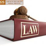 Tổng đài tư vấn pháp luật sở hữu trí tuệ 1900 6100 – công ty Luật TGS