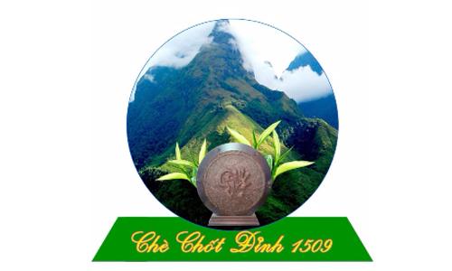 chu-nhan-hieu-che-chot-dinh-1509-danh-gia-ve-viec-tgs-lawfirm-dai-dien-dang-ky-bao-ho-nhan-hieu
