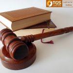 Tìm hiểu về trách nhiệm hình sự của pháp nhân Phần I