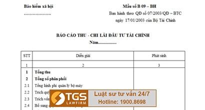 Mẫu báo cáo thu chi lãi đầu tư tài chính – TGS LawFirm