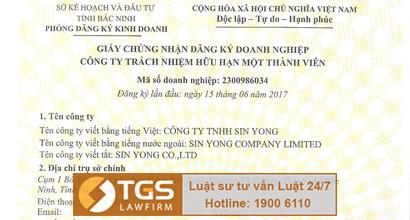 hang-luat-tgs-thuc-hien-dich-vu-phap-ly-xin-cap-giay-phep-hoat-dong-cho-thue-lai-lao-dong