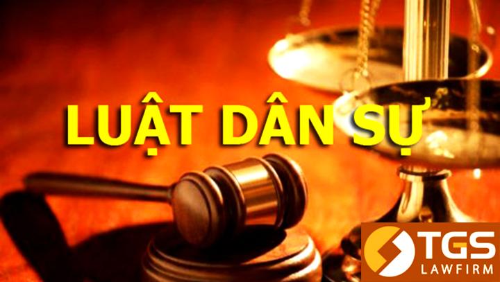 Tư vấn pháp luật dân sự trực tuyến TGS