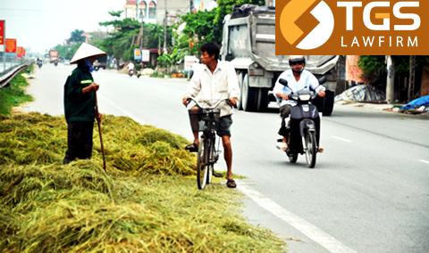 Xử lý việc phơi rơm rạ thóc lúa trên đường cản trở giao thông