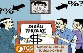 Hỏi đáp tình huống tranh chấp đất đai- Công ty TGS Law