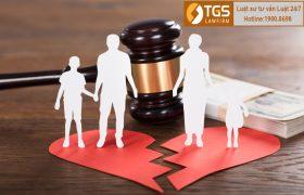 Tư vấn thủ tục ly hôn giành quyền nuôi hai con theo quy định