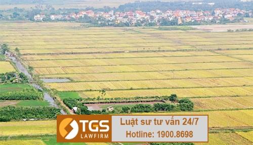 Dịch vụ giải quyết tranh chấp đất đai huyện Hoài Đức