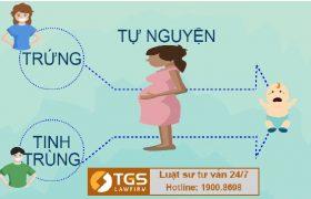 Quy đinh pháp luật về Mang thai hộ vì mục đích nhân đạo