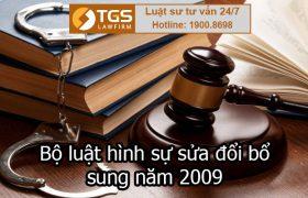 Bộ luật hình sự sửa đổi bổ sung năm 2009