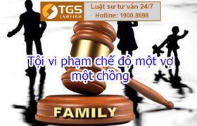 Điều 182 Bộ luật hình sự về Tội vi phạm chế độ một vợ, một chồng