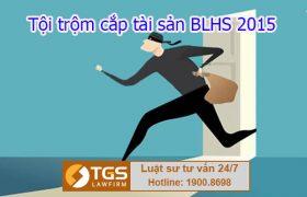 Điều 173 Bộ luật Hình sự 2015: Tội trộm cắp tài sản