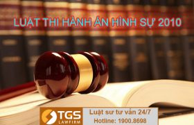 Những quy định chung của luật thi hành án hình sự 2010