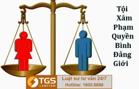 Điều 165 Bộ luật Hình sự 2015 Sửa đổi, bổ sung 2017