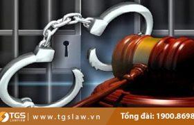 Căn cứ miễn trách nhiệm hình sự theo quy định tại Khoản 3 Điều 29