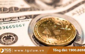 Chơi(đầu tư) tiền ảo, ngoại hối có vi phạm pháp luật không?